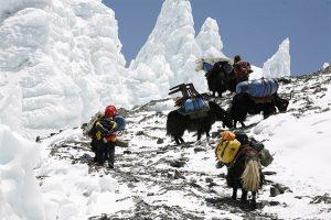 Kharta Valley & Everest Kangshung Face Trek /2017
