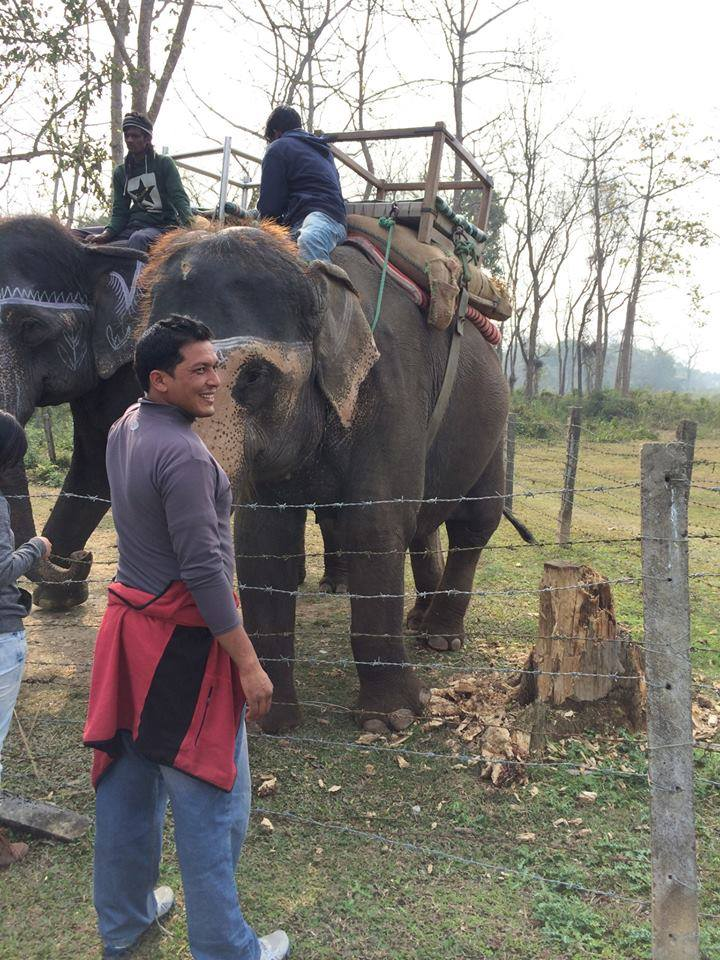 Jungle Safari , Chitwan National Park