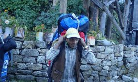 Jungle Safari tour in Nepal Spring and Autumn 2017 Our company has passed a decade working in tourism industry and we have various independent outlets for travel/tour packages like you're, climbing