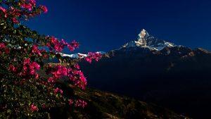10 Reasons everyone should visit Nepal & Himalayas