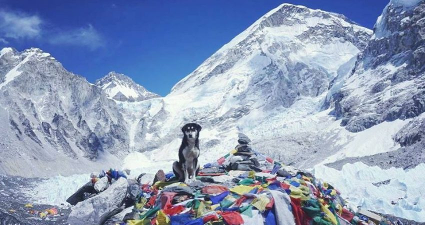 Everest Base Camp Trek - Fixed Departure Trip 2017 Organized by Nepal Guide info team